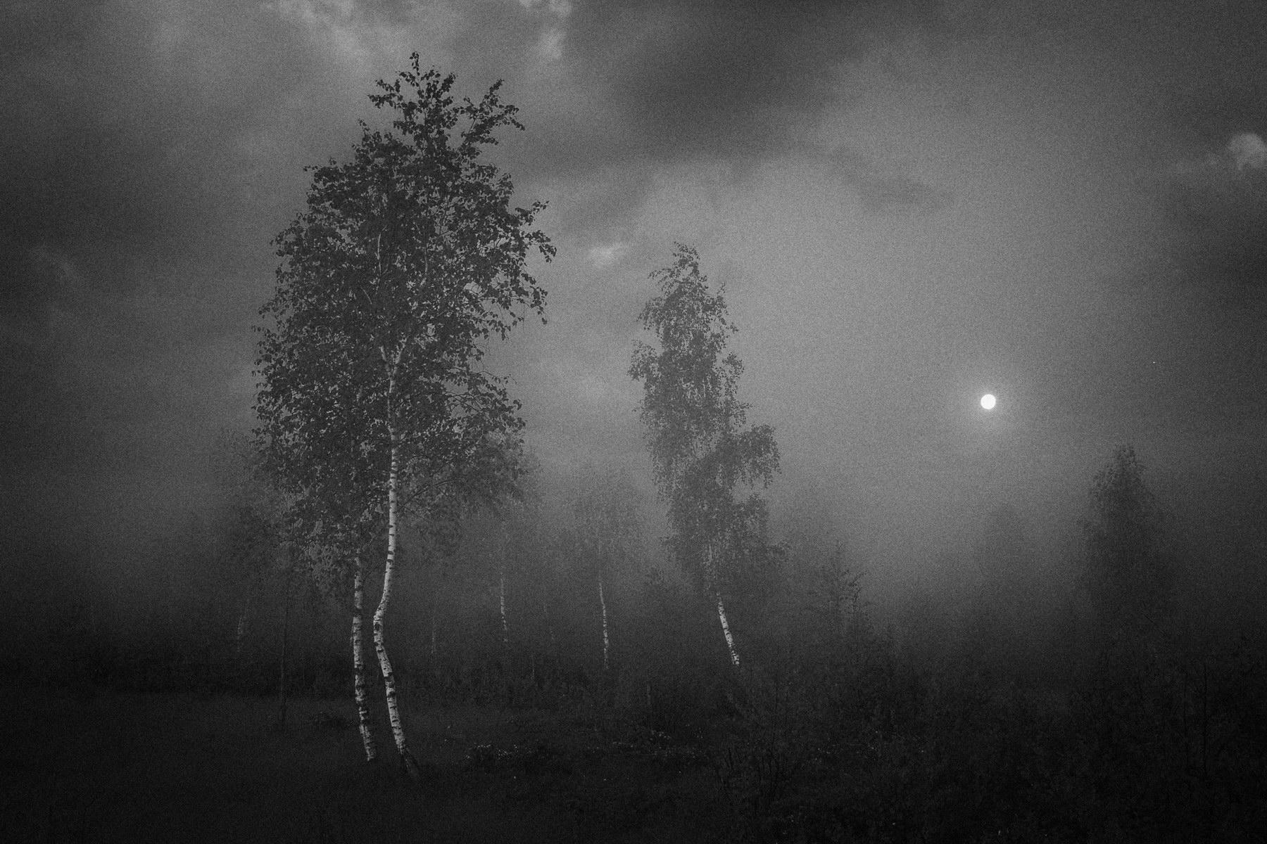 Фото пейзажей при лунном свете 3