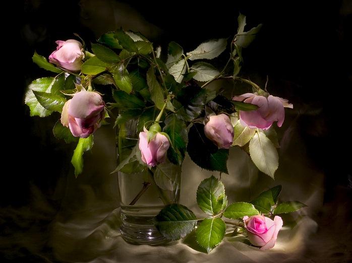 Стиле, доброй ночи картинки с цветами красивые