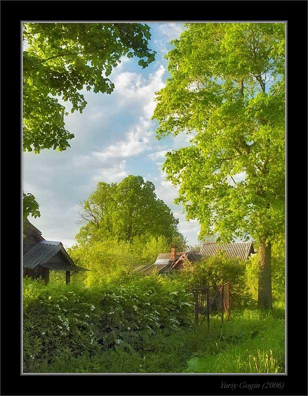 Лето в деревне картинки вертикальные
