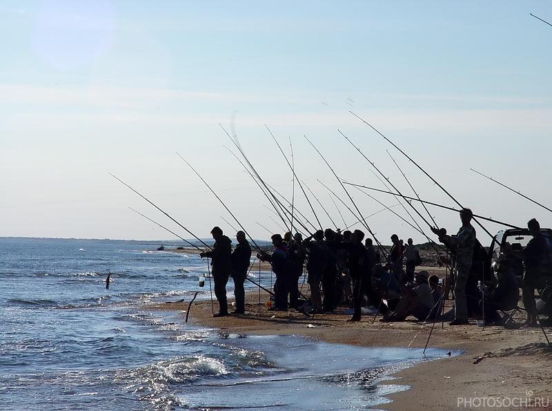 как ловить рыбу с пирса в черном море