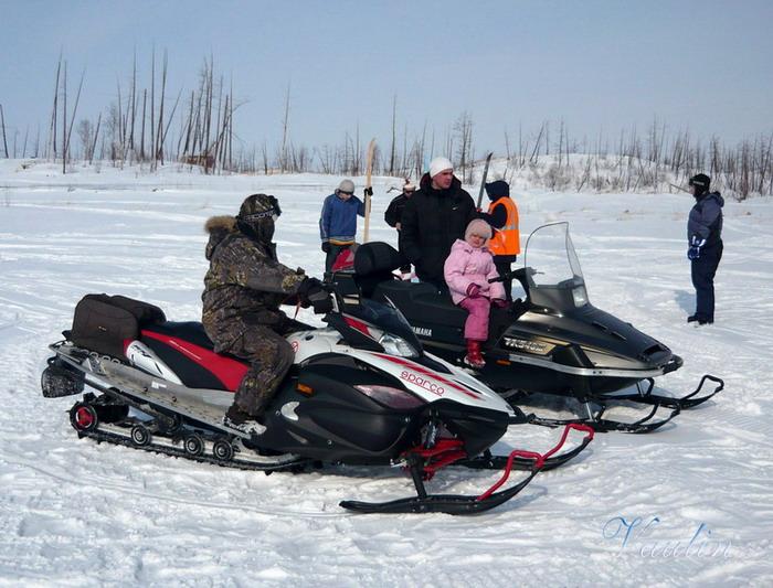 Снегоходы 2009 фото
