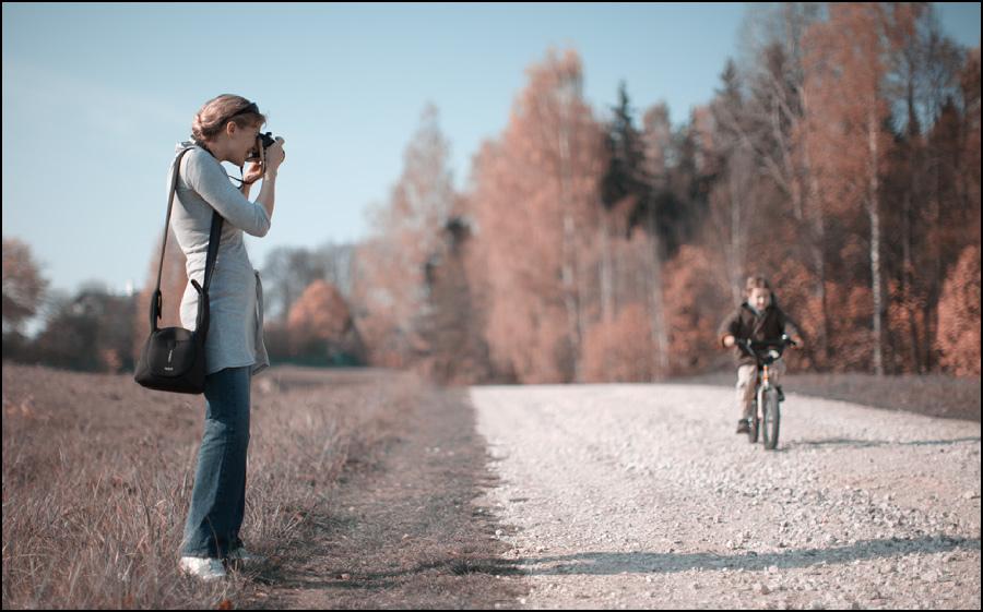 большая мощная упрощая жизнь фотографа масть лошадей