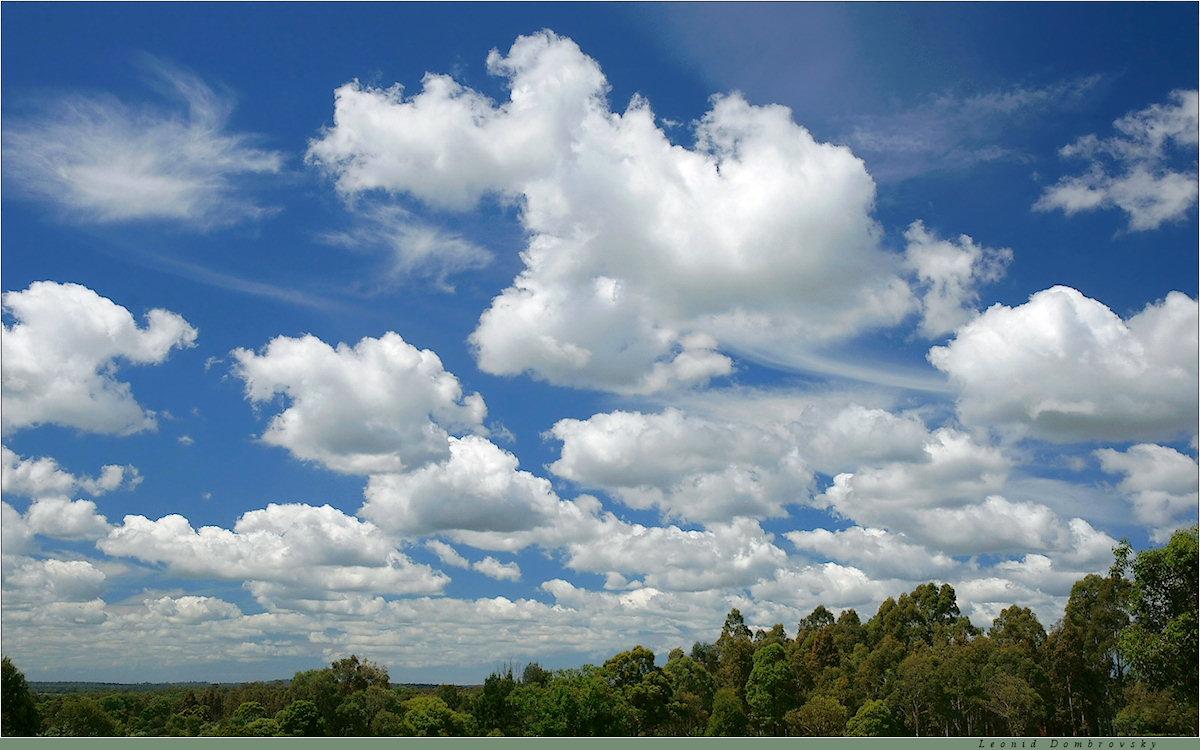 праздником мерцающие картинки облака дугообразная цветовая