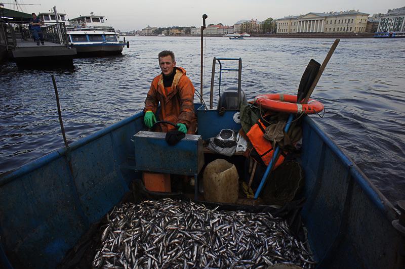 ловить рыбу в спб