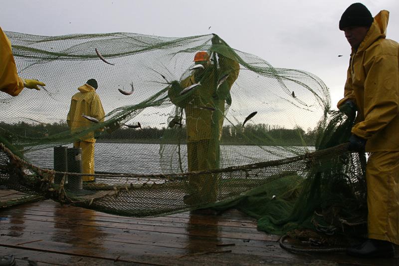 где ловить рыбу с лодки в ленинградской области