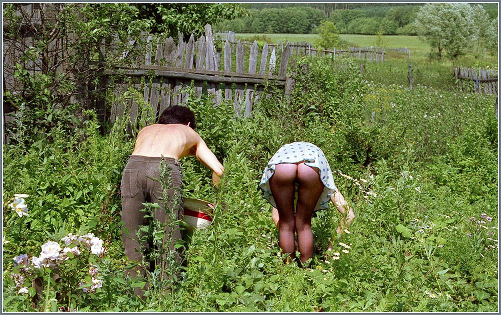 соседка с большой жопой поливает огород - 11