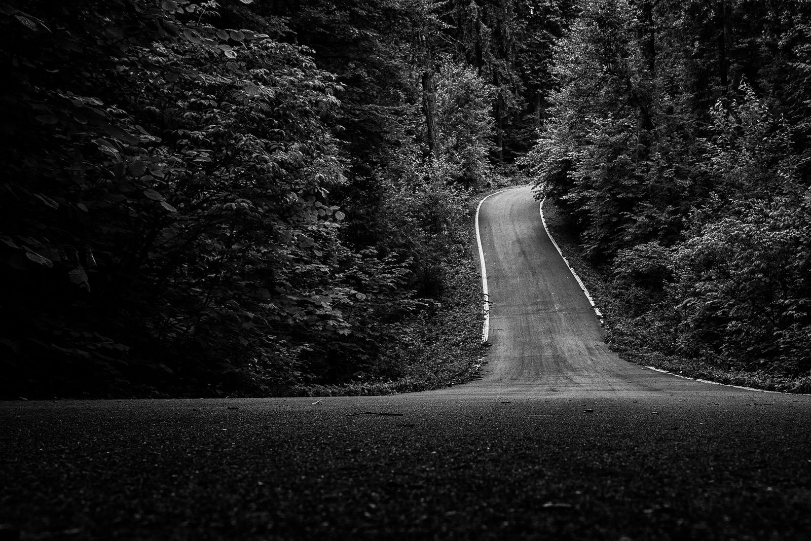 черно белые картинки дороги дополнила вечерний наряд