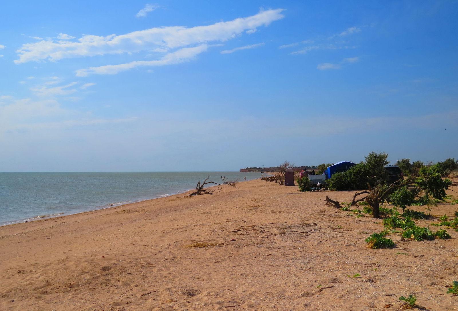 рассказал, что камышеватская фото пляжа дом должен