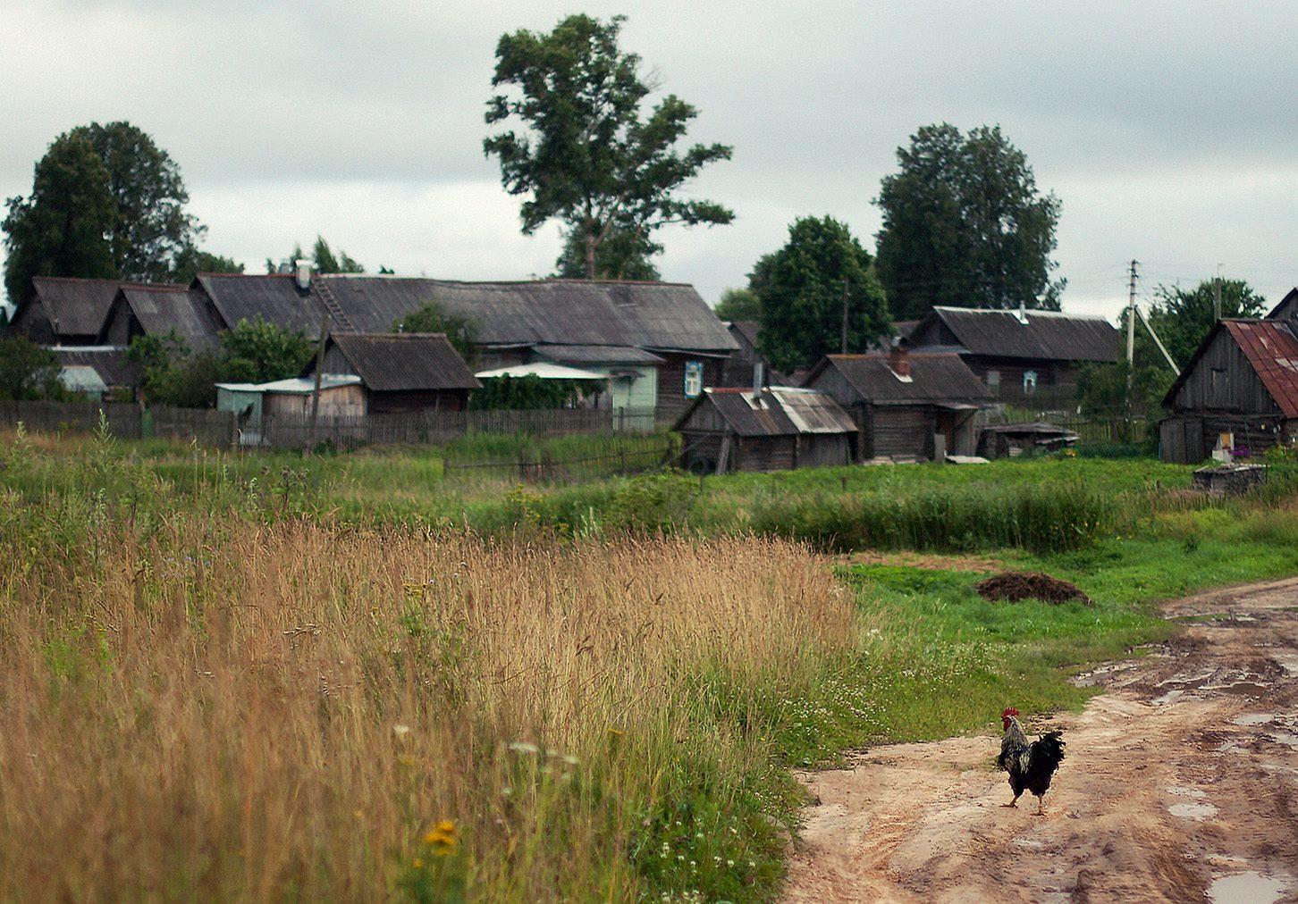 поверните фото деревни бедрицы главной фишкой сэндвича