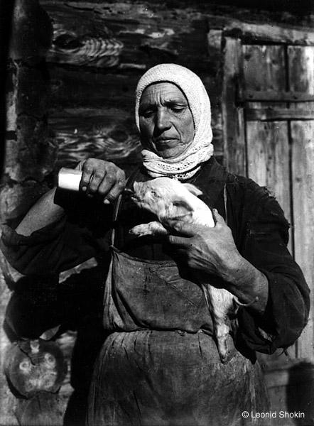 &copy;Леонид Шокин. «Свинарка. 1930-е гг. Современный отпечаток<br>  &copy; Собрание  М.Голосовского»