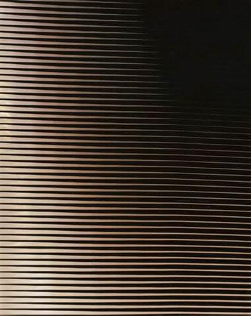 Возможность для созерцания (Vol. 2) 2007. Компьютерный отпечаток, Diasec 259 x 203 см. Courtesy Purdy Hicks Gallery