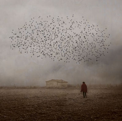<b>Rosa Basurto</b>. Portfolio - Mirando al cielo (Looking to the Sky).<br /> @ Rosa Basurto