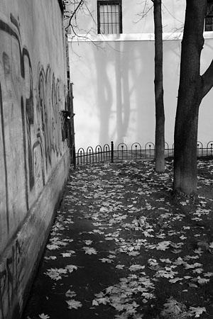 Олег Матюхин «Осень на Петроградской.», С-Петербург, 2007