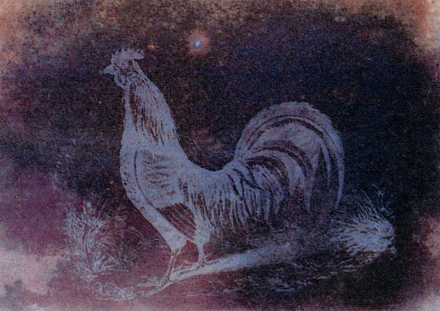 Фокс Тальбот, Фотогенный рисунок, 1830егг.