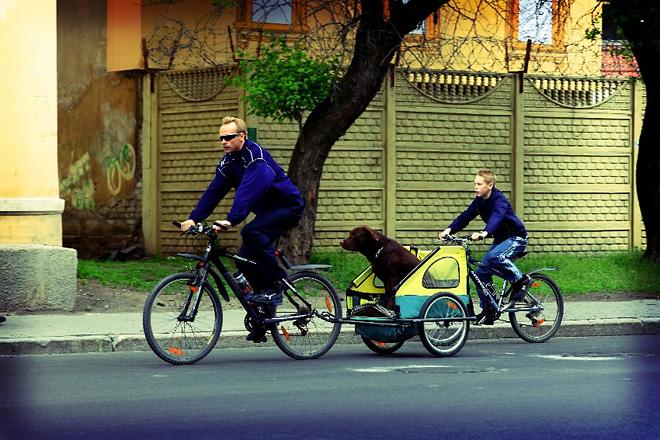 Максим Приказов «Трое на велосипедах, не считая собаки»