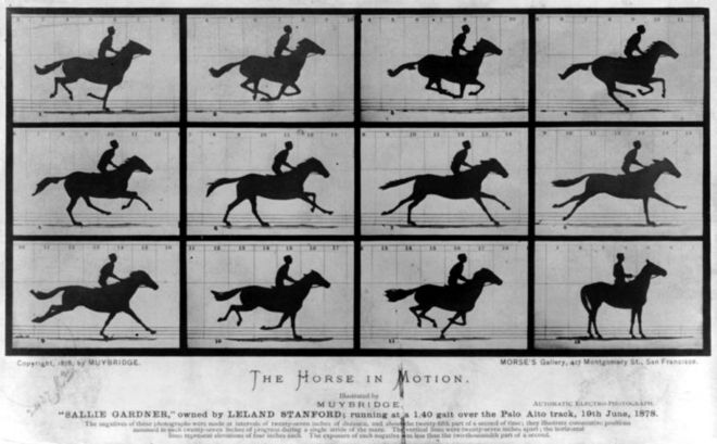 Эдвард Мейбридж ( Eadweard Muybridge), Лошадь в движении, 1878