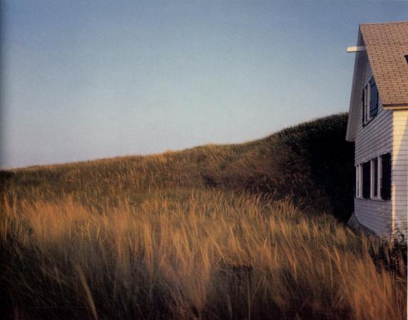 Dune grass, House, Truro