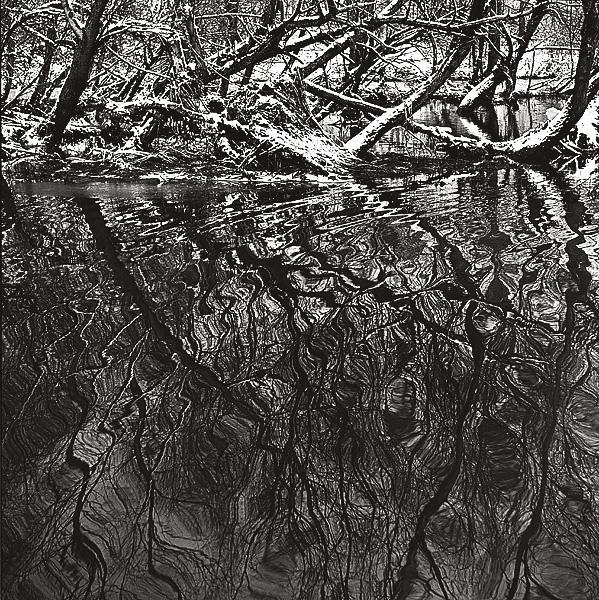 ©Галина Лукьянова. «Ноябрь. Омут. Из цикла Солнцеворот. 1978-1992»