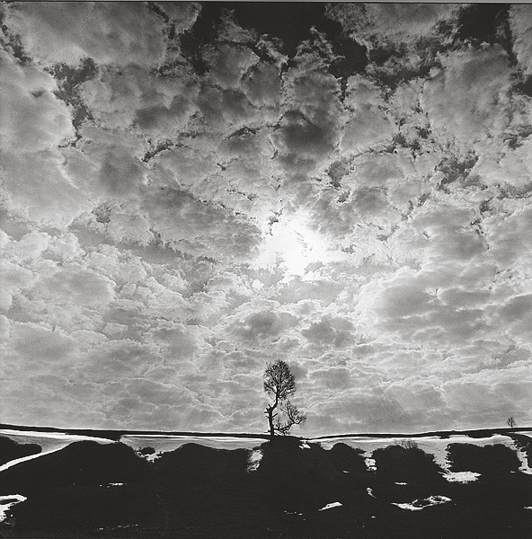 ©Галина Лукьянова. «Март. Ожидание. Из цикла Солнцеворот. 1978-1992»