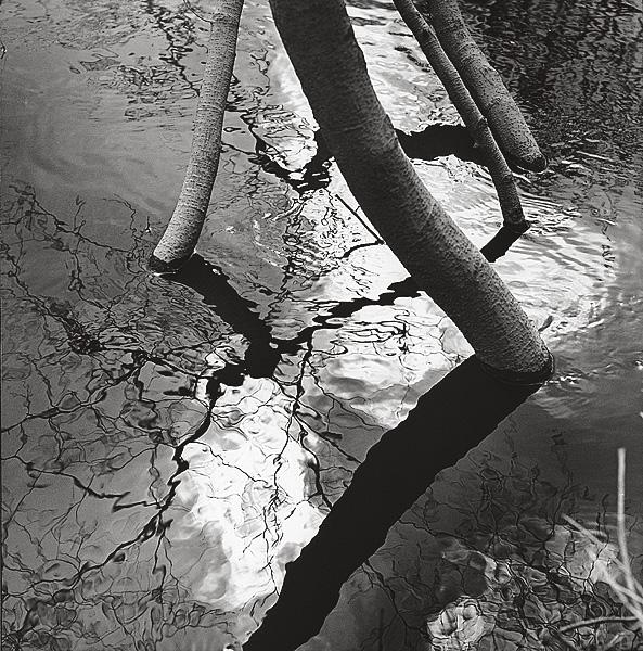 ©Галина Лукьянова. «Большая вода. Начало 1980-х»