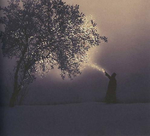 Хуан Фонкуберта «Karelia the miracle of cryofloration»