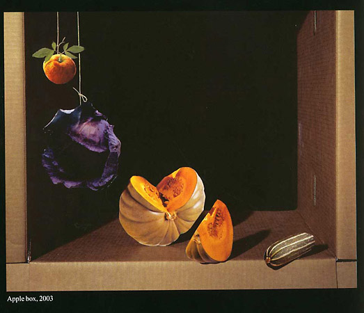 Морис Схельтонс «apple box», 2003
