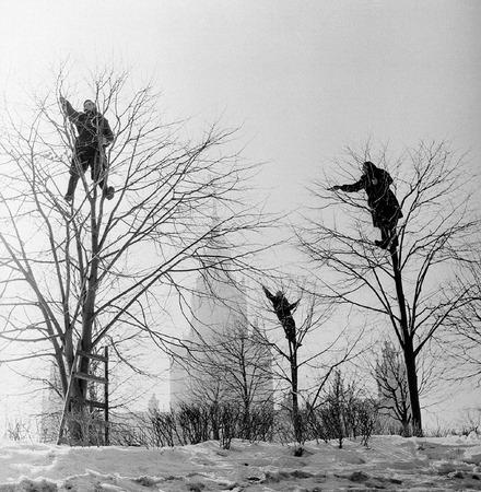 Виктор Ахломов<br /> «На Ленинских горах. Москва» <br /> 1960 <br /> Собрание автора