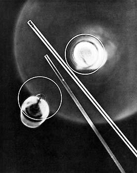 Rudolf Müller-Schönhausen. Photogramm. 1931  © Münchner Stadtmuseum