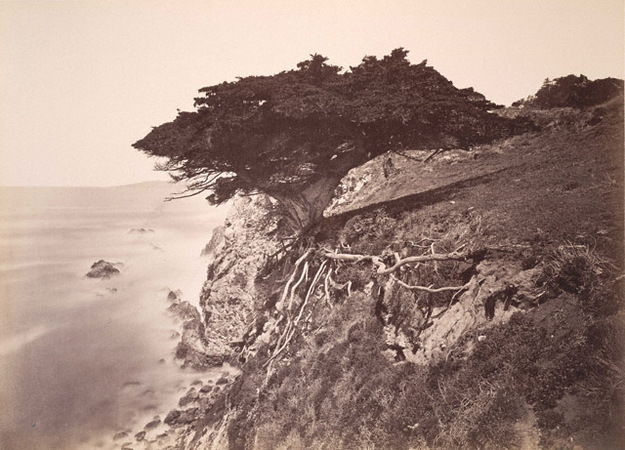 Carleton Watkins.