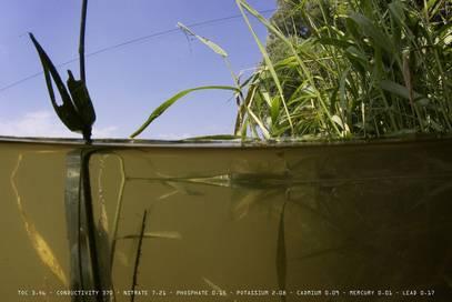 <p>Андреас Мюллер-Поле: The Danube River Project, 2005<br /> Уферхаллен</p>