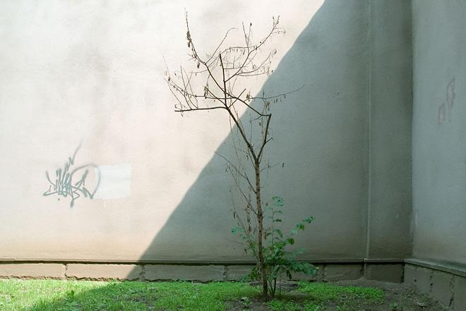 Павел Кузнецов. «Без названия.» 2007