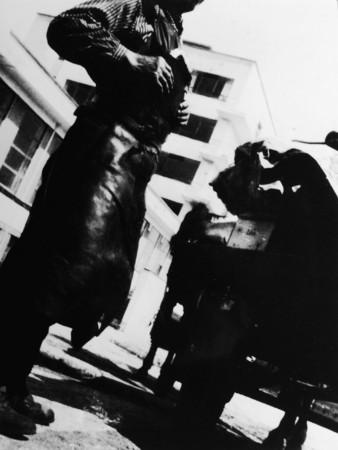 Ирэна Блюхова (Irena Bluhova). Баухаус. 1931