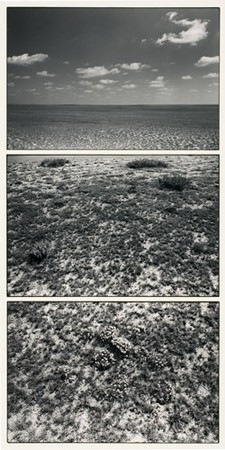 Tuckerman�s Ravine, NH, Triptych, 1965.