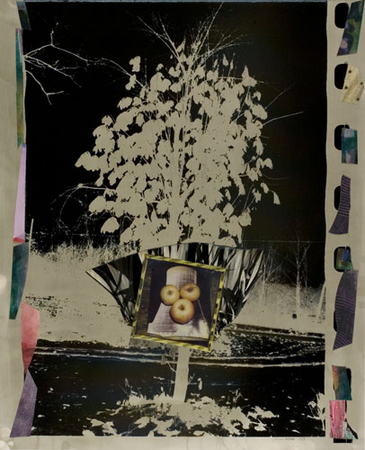 Pear Tree Cooling Tower and Apples, 1991.