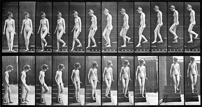 Eadweard Muybridge: Woman walking downstairs, late 19th century