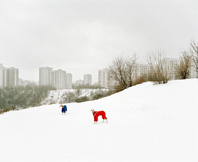 © Александр Гронский. Из серии «Граница»