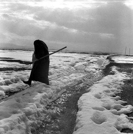 Женщина-фермер в деревне Тифник в двух километрах от нефтепровода Баку-Тбилиси-Джейхан. Эрзурум, Турция. 2007<br> Линия жизни<br> желатино-серебряная печать<br> 40x40 cm, edition of 20