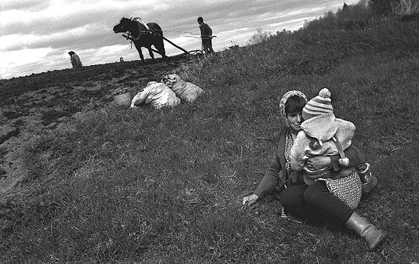 ©Люшен Перкинс. «Вологодская обл., д. Ануфриево, 1995»