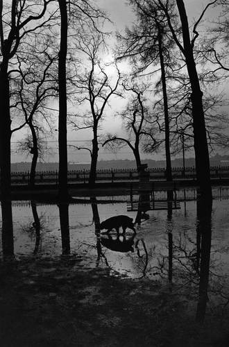 ©Борис Смелов. «Весенняя охота на лягушек. 1995»