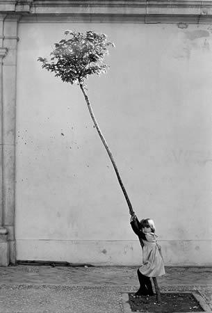 Сабин Вайс. <br> Испания. Девочка и дерево. 1981