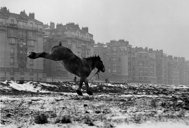 Сабин Вайс. <br> Париж. Порт-де-Ванв. 1952