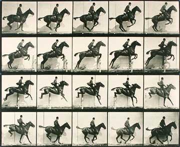 Eadweard Muybridge. Plate 640. Jjumping a hurdle; Saddle; Bay horse Daisy, 1887, Corcoran Gallery Of Art, Washington