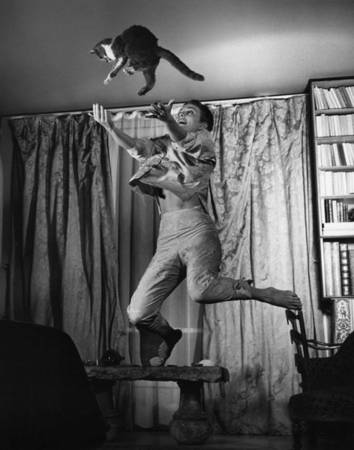 "Philippe Halsman. Jean Seberg with Cat, 1959. 10 x 8"" vintage silver print. Stamped on verso."