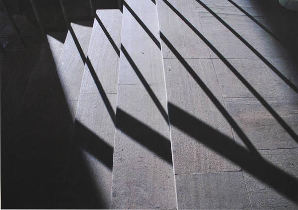 ©Группа авторов. «Александр Слюсарев. Низкое солнце. Осень. 2006»