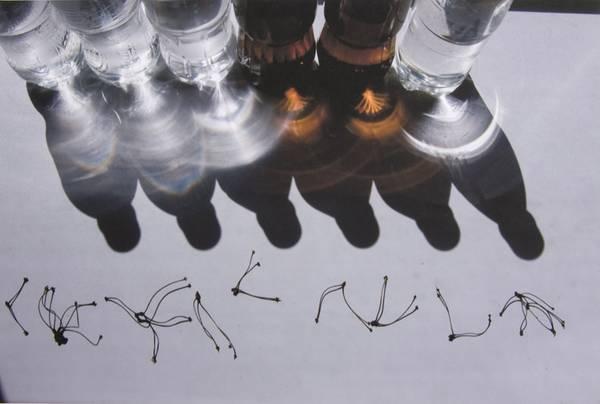 ©Группа авторов. «Александр Слюсарев. Солнечный свет. Лето. 2008»