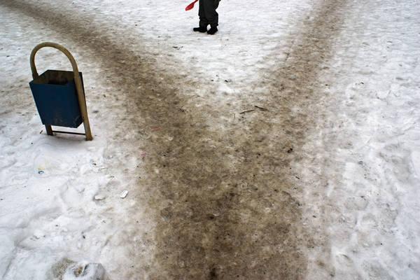 ©Группа авторов. «Дмитрий Музалев. Москва. Январь 2009 г.»