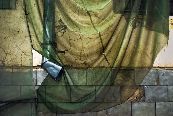 ©Группа авторов. «Дмитрий Музалев. Москва. Лето 2008 г.»