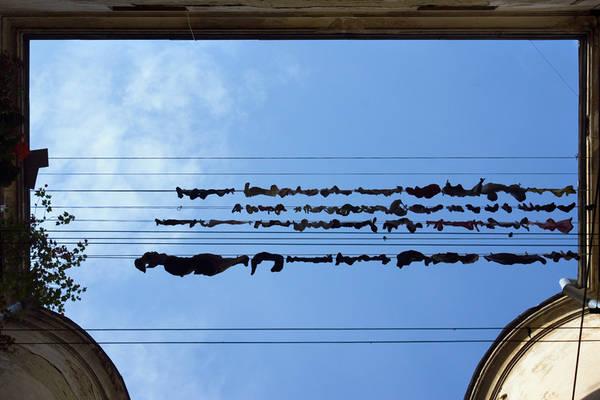 ©Группа авторов. «Дмитрий Музалев. Львов. Сентябрь 2009 г.»