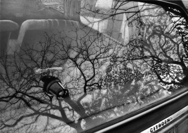 ©  Екатерина Голицина