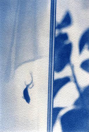 Vadim Tolstov. «Золотая синяя рыбка». Цианотипия, акварельная бумага, ручная печать, размер 28х42